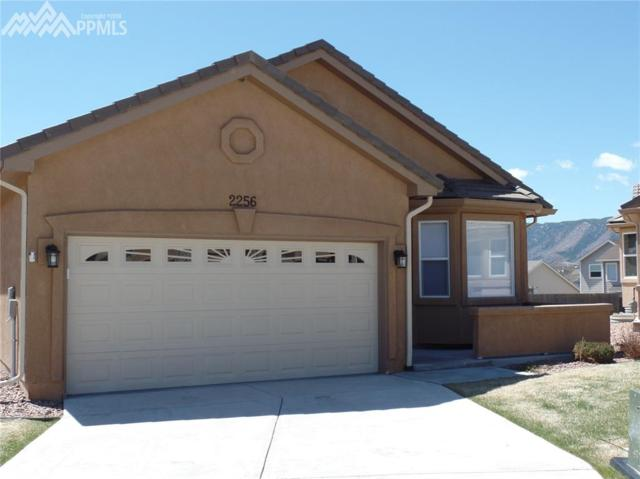 2256 Creek Valley Circle, Monument, CO 80132 (#1971929) :: The Treasure Davis Team
