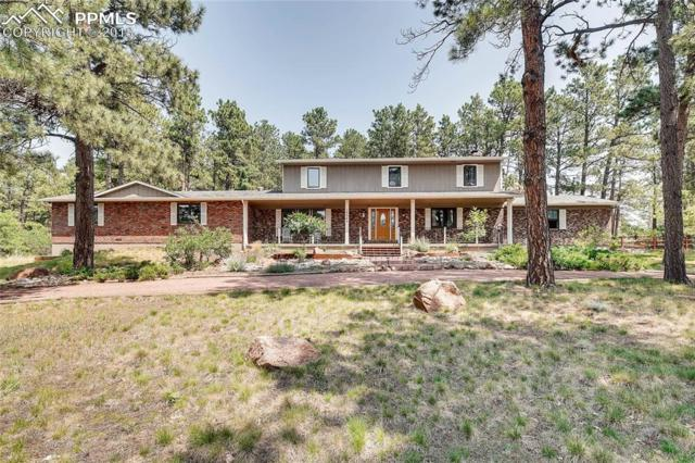 19365 Doewood Drive, Monument, CO 80132 (#1973384) :: Jason Daniels & Associates at RE/MAX Millennium
