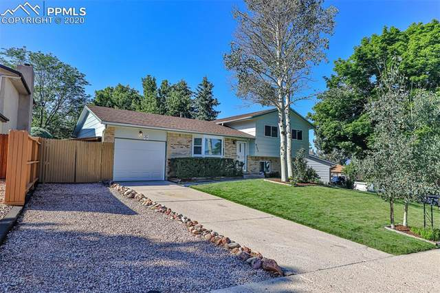 4125 Sod House Trail, Colorado Springs, CO 80917 (#1973956) :: Finch & Gable Real Estate Co.