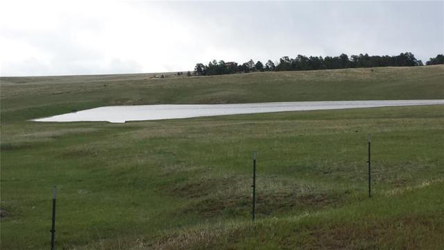 21320 Comanche Creek Drive, Elbert, CO 80106 (#1976171) :: 8z Real Estate