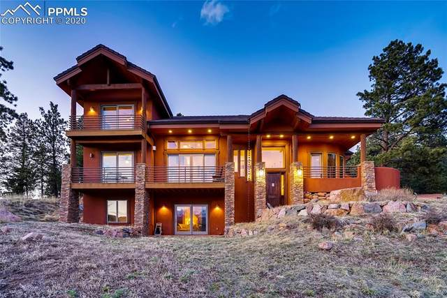 202 Eagles Perch Place, Woodland Park, CO 80863 (#1976529) :: Tommy Daly Home Team