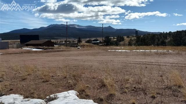205 Ridge Top Drive, Divide, CO 80814 (#1983130) :: 8z Real Estate