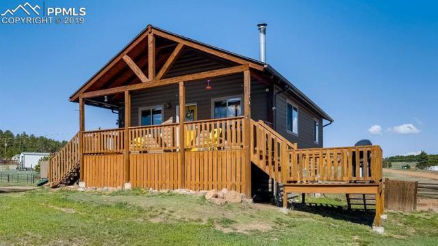 156 Tioga Trail, Florissant, CO 80816 (#1984056) :: Fisk Team, RE/MAX Properties, Inc.