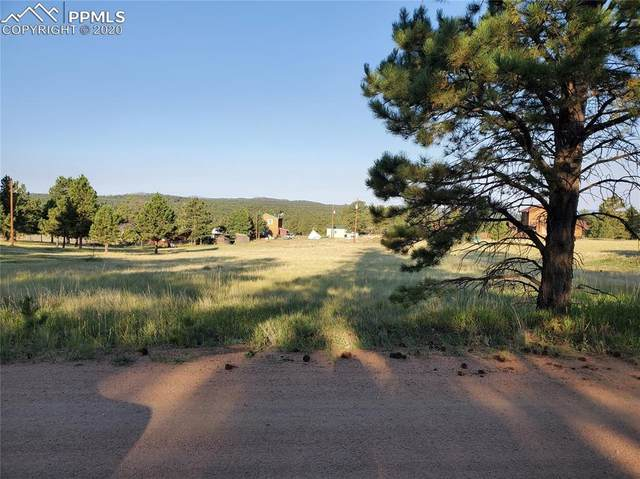 50 Wasatch Lane, Florissant, CO 80816 (#1984902) :: Tommy Daly Home Team