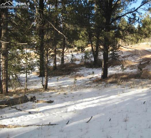 88 Granite Lane, Cripple Creek, CO 80813 (#1988472) :: CC Signature Group