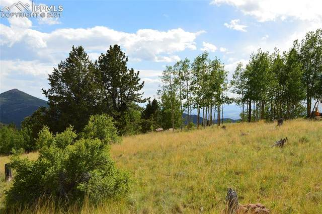 1368 Fairview Drive, Cripple Creek, CO 80813 (#1992559) :: Tommy Daly Home Team