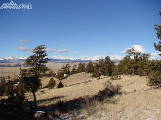Clear Creek Road, Hartsel, CO 80449 (#1997992) :: 8z Real Estate