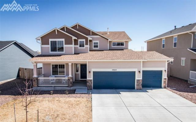 10664 Abrams Drive, Colorado Springs, CO 80925 (#1999498) :: RE/MAX Advantage