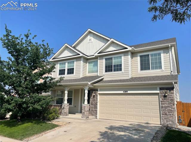 4289 Ashby Field Drive, Colorado Springs, CO 80922 (#2000458) :: The Dixon Group