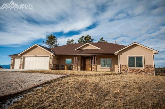 14090 Black Forest Road, Colorado Springs, CO 80908 (#2001042) :: Action Team Realty