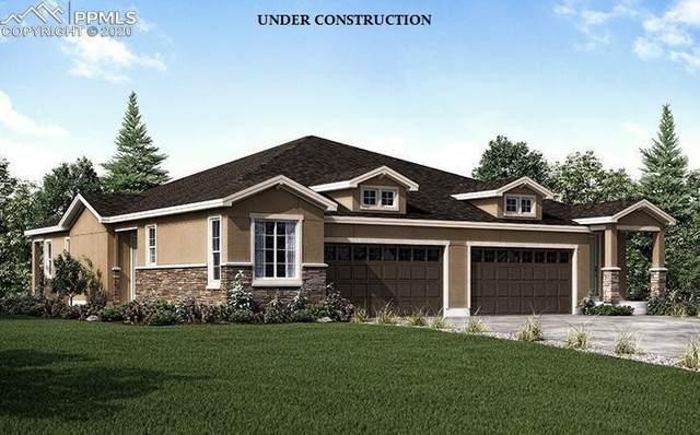 169 Wild Grass Way, Colorado Springs, CO 80919 (#2005238) :: 8z Real Estate