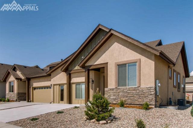 6558 Petaluma Point, Colorado Springs, CO 80923 (#2020082) :: 8z Real Estate