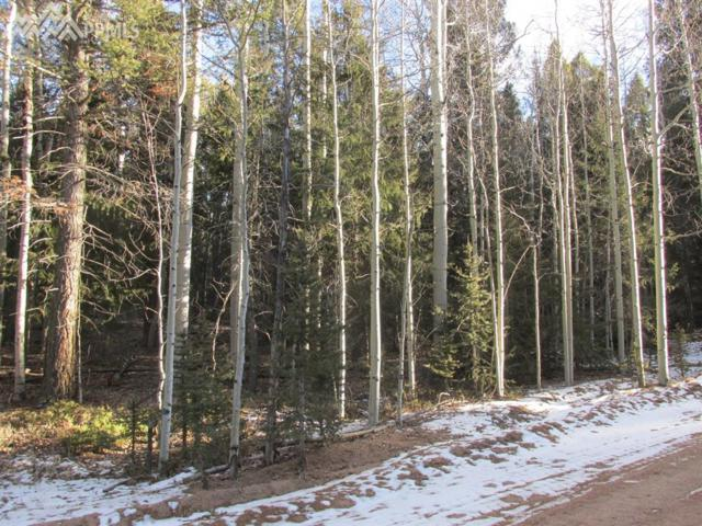 0 Jolly Rogue Drive, Divide, CO 80814 (#2023812) :: 8z Real Estate