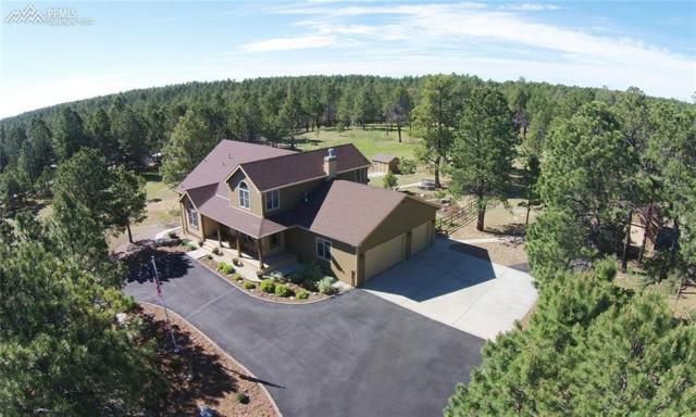 11115 Salt Creek Place, Colorado Springs, CO 80908 (#2029413) :: RE/MAX Advantage