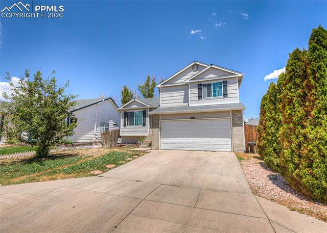 1081 N Swayback Drive, Fountain, CO 80817 (#2029887) :: Finch & Gable Real Estate Co.