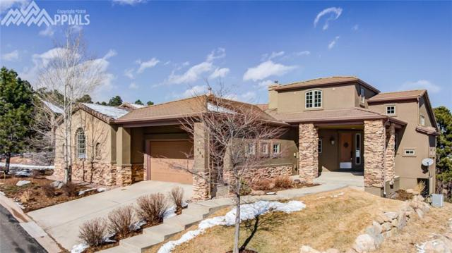 1066 Summer Spring View, Colorado Springs, CO 80906 (#2030367) :: Jason Daniels & Associates at RE/MAX Millennium