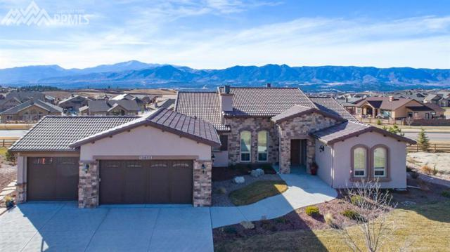 13602 Stony Hill Point, Colorado Springs, CO 80921 (#2031378) :: Action Team Realty
