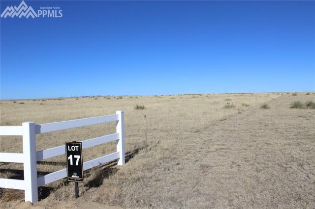 19030 Good Life View, Calhan, CO 80808 (#2032601) :: Action Team Realty