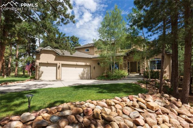 150 King Arthurs Knoll, Monument, CO 80132 (#2035588) :: 8z Real Estate
