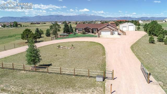8120 Talon Court, Peyton, CO 80831 (#2036642) :: CC Signature Group
