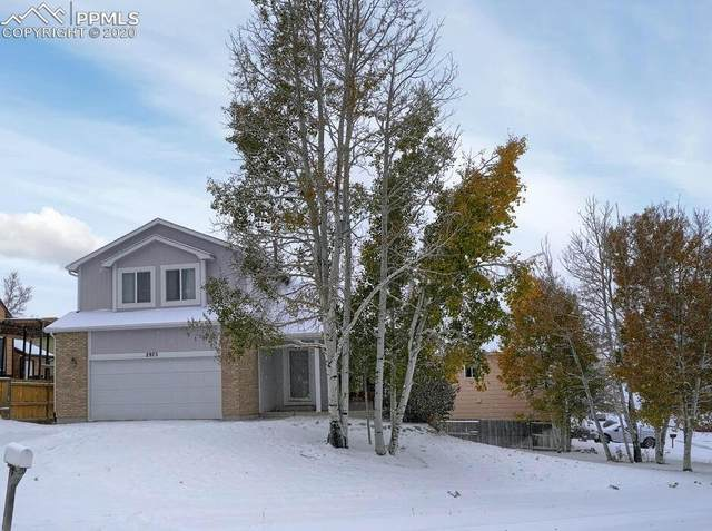 2975 Leoti Drive, Colorado Springs, CO 80922 (#2038431) :: Action Team Realty