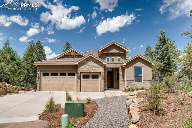 5394 Old Star Ranch View, Colorado Springs, CO 80906 (#2040105) :: The Kibler Group