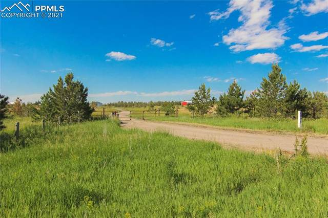 1572 Carlson Road, Parker, CO 80138 (#2045257) :: Action Team Realty