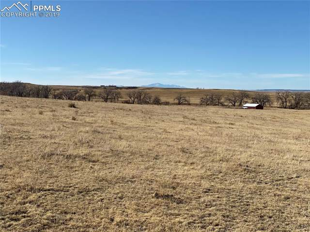 0 E Ramah Road, Ramah, CO 80832 (#2049202) :: Tommy Daly Home Team