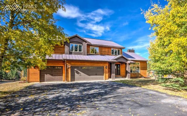 100 Red Clover Court, Woodland Park, CO 80863 (#2054819) :: 8z Real Estate