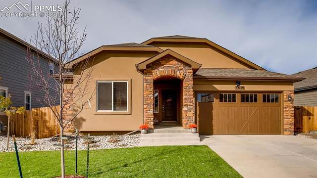 6650 Van Winkle Drive, Colorado Springs, CO 80923 (#2056732) :: Finch & Gable Real Estate Co.