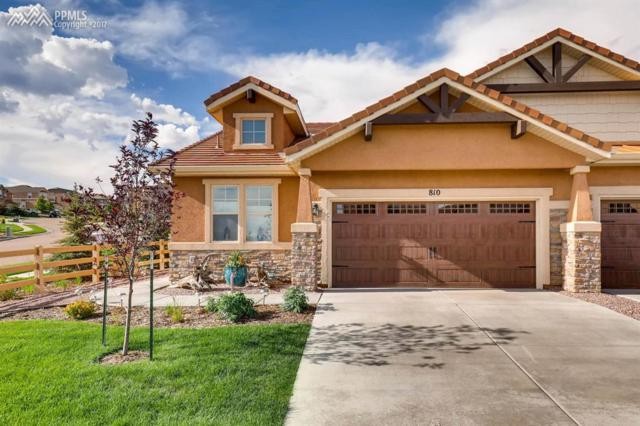 810 Yellow Jasper Point, Colorado Springs, CO 80921 (#2060811) :: Jason Daniels & Associates at RE/MAX Millennium