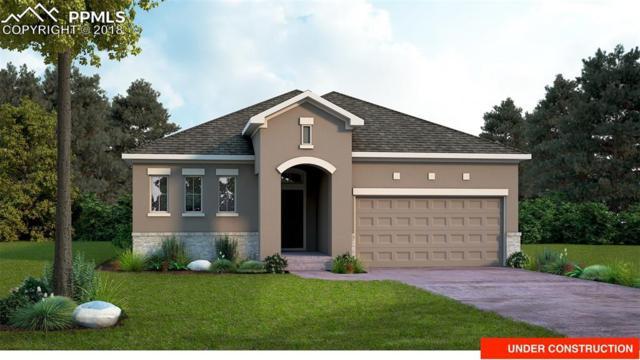 6262 Rowdy Drive, Colorado Springs, CO 80924 (#2062281) :: Harling Real Estate