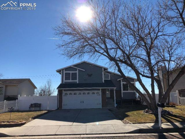 7445 Powderwash Drive, Colorado Springs, CO 80911 (#2062628) :: The Hunstiger Team