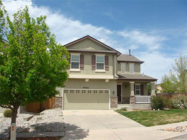 4842 Turning Leaf Way, Colorado Springs, CO 80922 (#2067862) :: Colorado Home Finder Realty