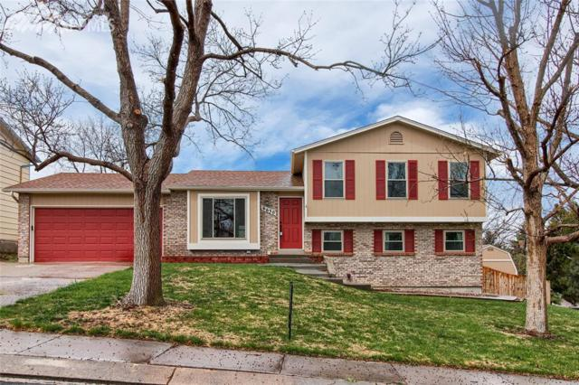 6630 Buffalo Drive, Colorado Springs, CO 80918 (#2069969) :: Fisk Team, RE/MAX Properties, Inc.