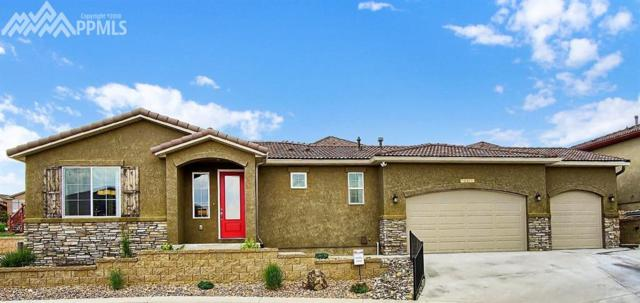 2151 Lone Willow View, Colorado Springs, CO 80904 (#2071559) :: Fisk Team, RE/MAX Properties, Inc.
