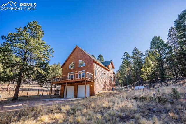 50 Mission Creek Circle, Lake George, CO 80827 (#2077607) :: CC Signature Group
