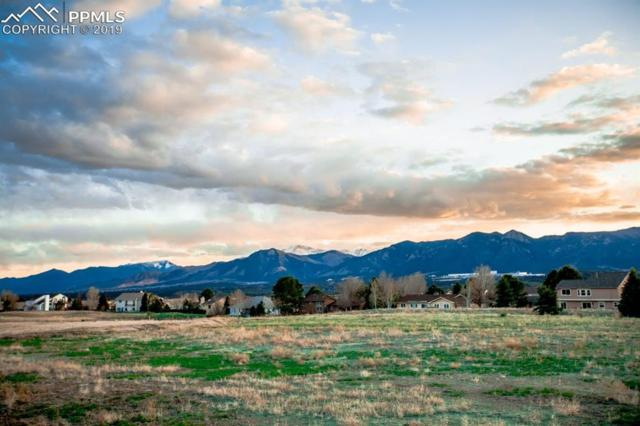 14184 Stone Eagle Place, Colorado Springs, CO 80921 (#2080175) :: Fisk Team, RE/MAX Properties, Inc.