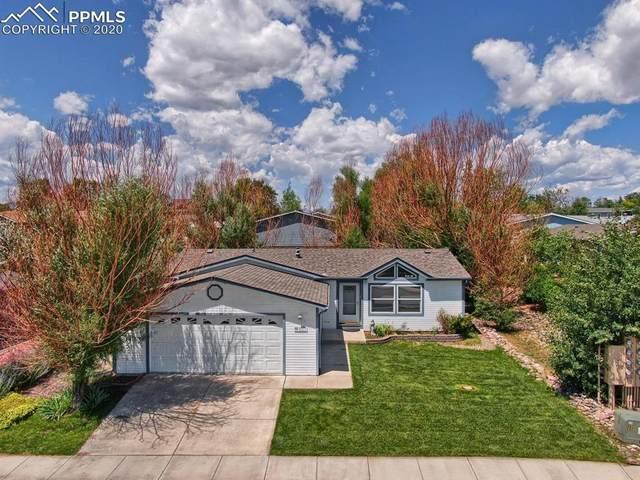 4577 Gray Fox Heights, Colorado Springs, CO 80922 (#2083627) :: Colorado Home Finder Realty