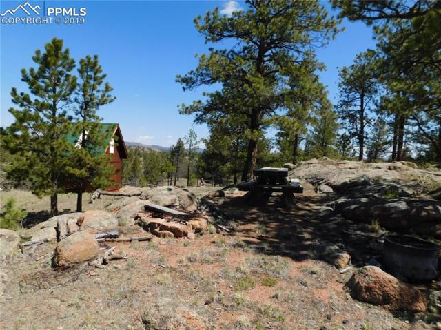 493 Apache Road, Florissant, CO 80816 (#2083867) :: CC Signature Group