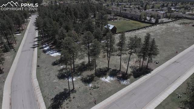 1235 Cottontail Trail, Woodland Park, CO 80863 (#2084757) :: Colorado Home Finder Realty
