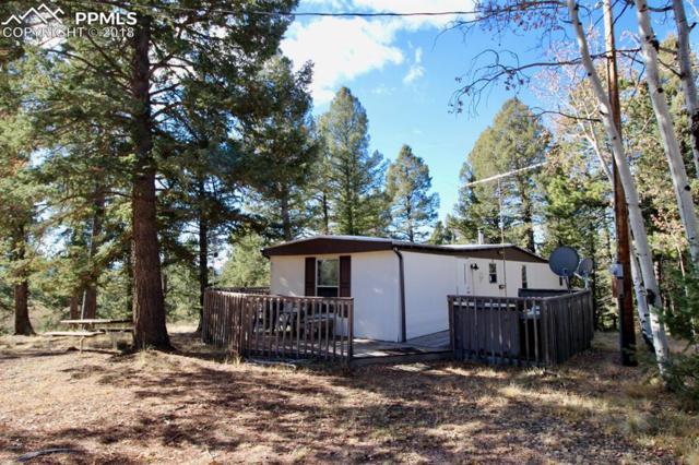553 Golden Bell Lane, Divide, CO 80814 (#2092839) :: 8z Real Estate