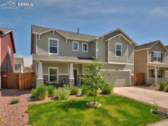 7536 Shallow Brooke Place, Colorado Springs, CO 80922 (#2098511) :: The Peak Properties Group
