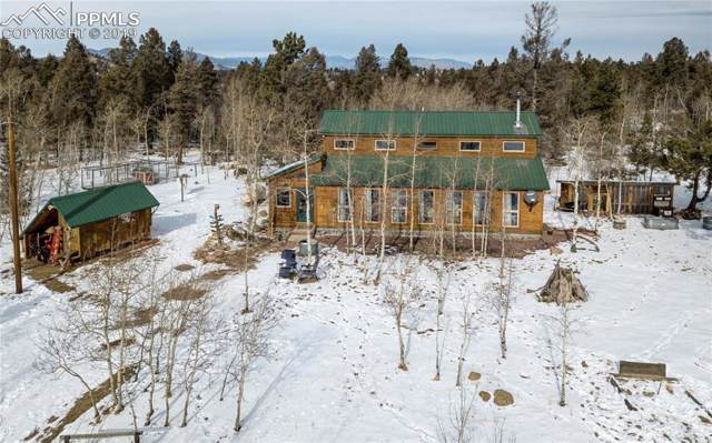 277 Elk View Road, Florissant, CO 80816 (#2099377) :: HomePopper
