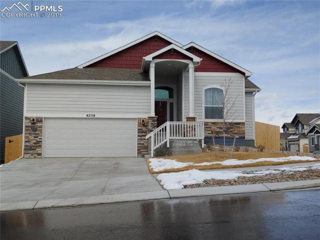 6238 Jorie Road, Colorado Springs, CO 80927 (#2105268) :: The Treasure Davis Team