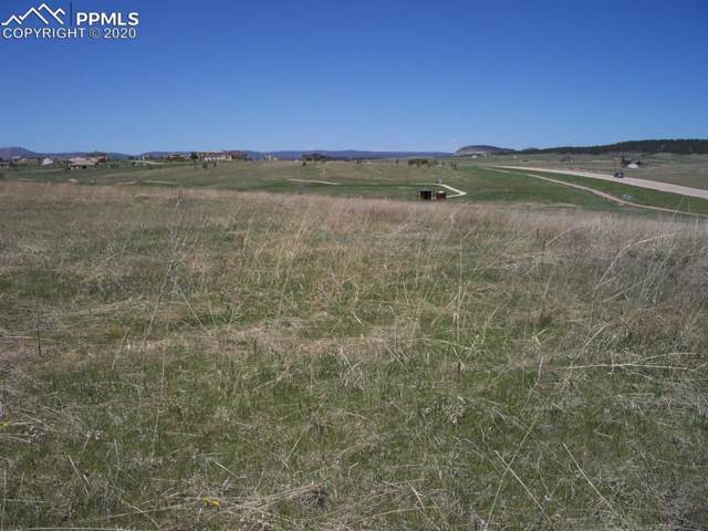 20408 Royal Troon Drive, Monument, CO 80132 (#2107311) :: Action Team Realty