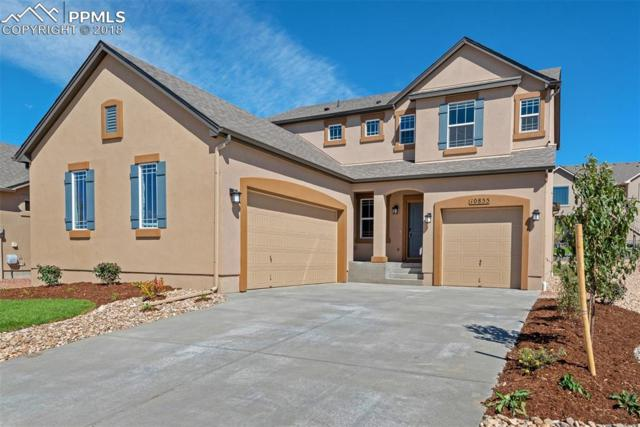 10855 Fossil Dust Drive, Colorado Springs, CO 80908 (#2108800) :: The Hunstiger Team