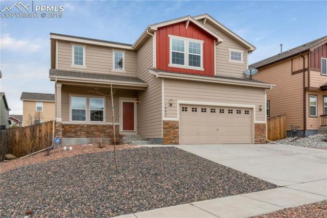 7902 Lightwood Way, Colorado Springs, CO 80908 (#2119665) :: The Hunstiger Team