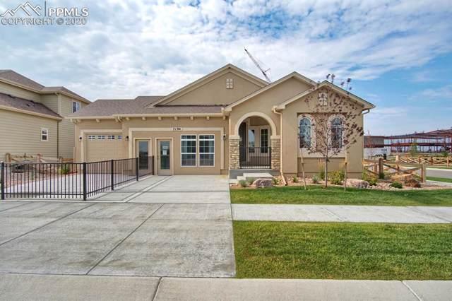 7194 Rim Bluff Drive, Colorado Springs, CO 80927 (#2121040) :: The Dixon Group