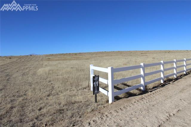 18385 Prairie Coach View, Calhan, CO 80808 (#2121638) :: Jason Daniels & Associates at RE/MAX Millennium